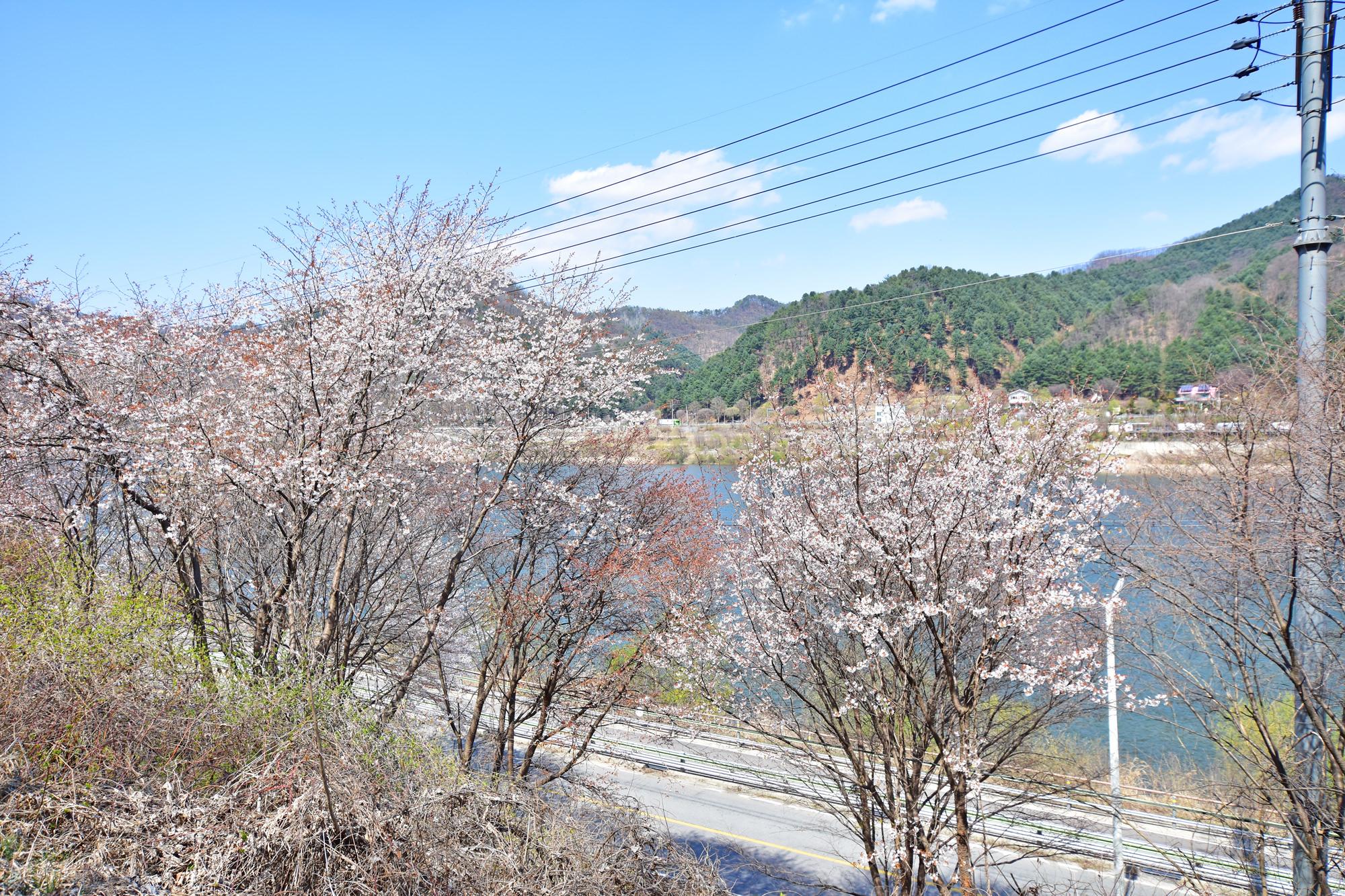 봄내길 2코스 이미지 5